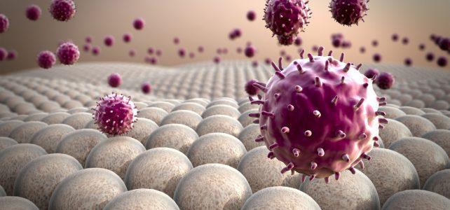 Каква роля играят червата за имунната ни система?